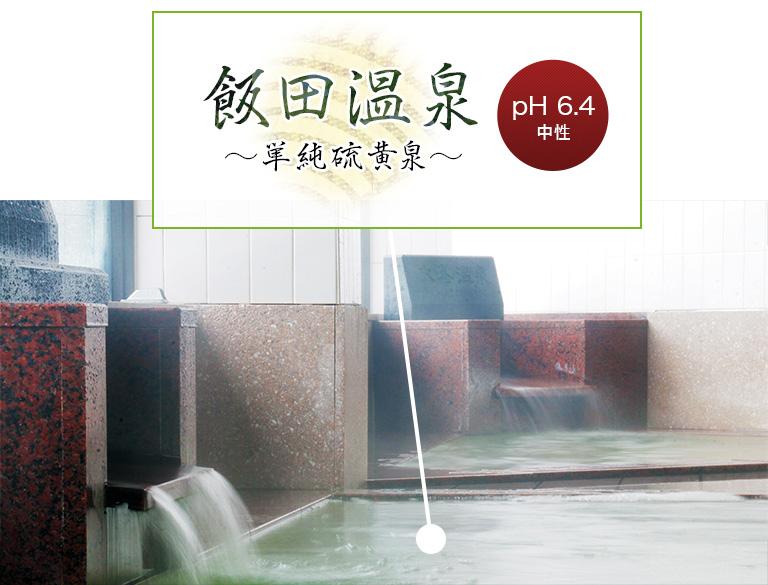 飯田温泉~単純硫黄泉~