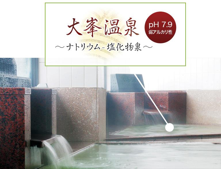 大峯温泉~ナトリウム・塩化物泉~